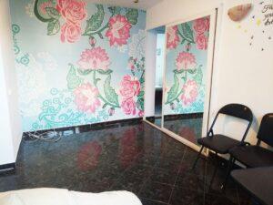 apartament 3 camere vanzare mihai bravu